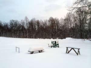 Feb2014_Snow_Trap