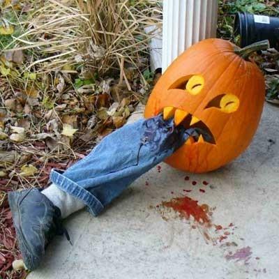 PumpkinLeg